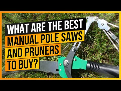 What Are The Best Manual Pole Saws and Pruners to Buy?