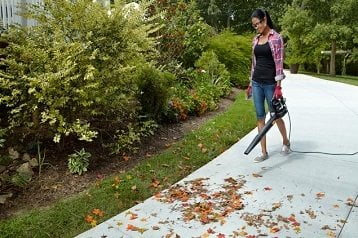Electric Leaf Blowers Reviews