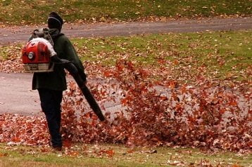 Gas Powered Leaf Blowers Reviews