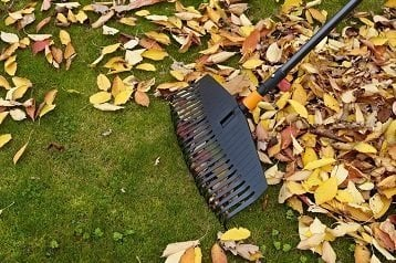 Leaf Rakes Reviews