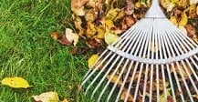 Types of Leaf Rakes