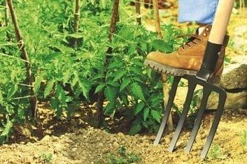 Garden Fork Reviews