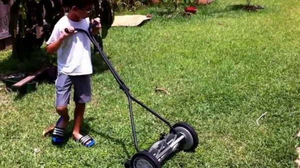 Reel Lawn Mover