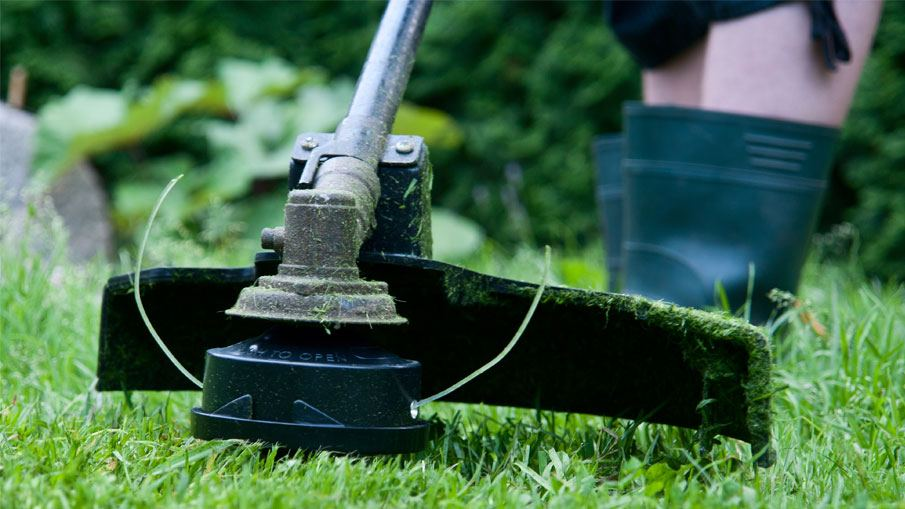 How to determine a best string trimmer head