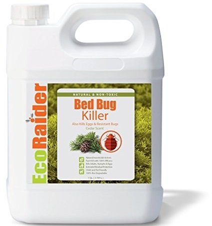 Where To Buy Ecoraider Bed Bug Spray