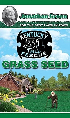 Jonathan Green Kentucky Tall Fescue Grass Seed