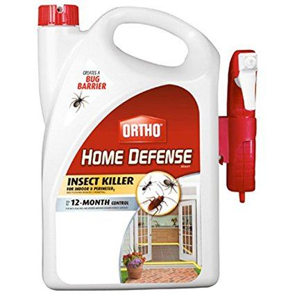Ortho 0196710 Home Defense MAX Insect Killer Spray