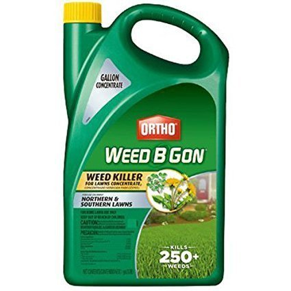 Ortho Weed B Gon Weed Killer for Lawns Concentrate