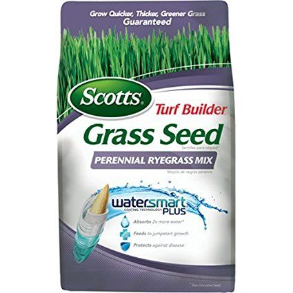Scotts Turf Builder Grass Seed - Perennial Ryegrass Mix