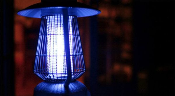 Best Bug Zapper
