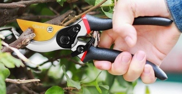 Best Pruning Shear