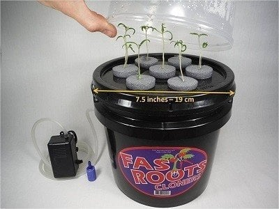 Fast Roots Cloners Indoor Cloning Machine
