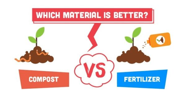 Compost vs Fertilizer