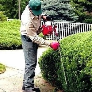 Gas Pole Hedge Trimmer