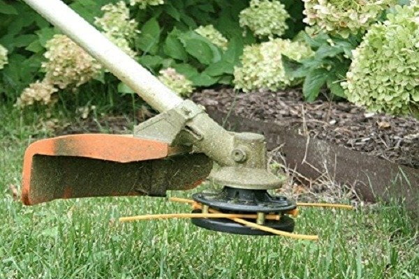 How to Buy Best String Trimmer Head
