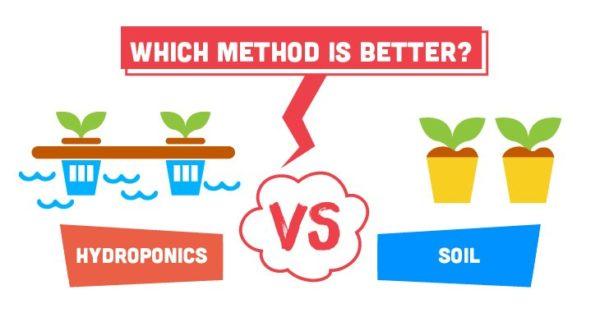 Hydroponics vs Soil
